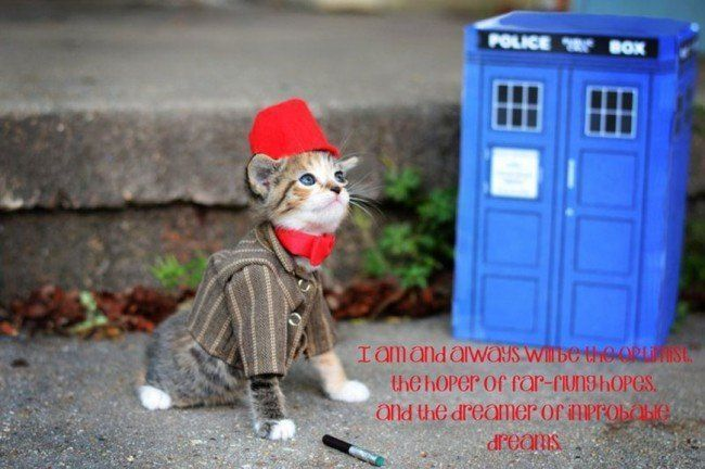 Si les héros de Game of Thrones, Star Wars ou Doctor Who étaient des chats ? #9