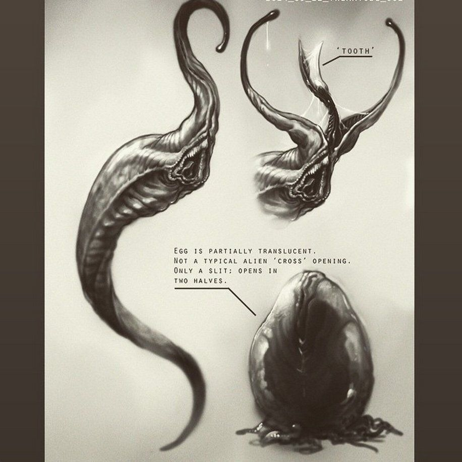 concept art alien film neil blomkamp pix geeks
