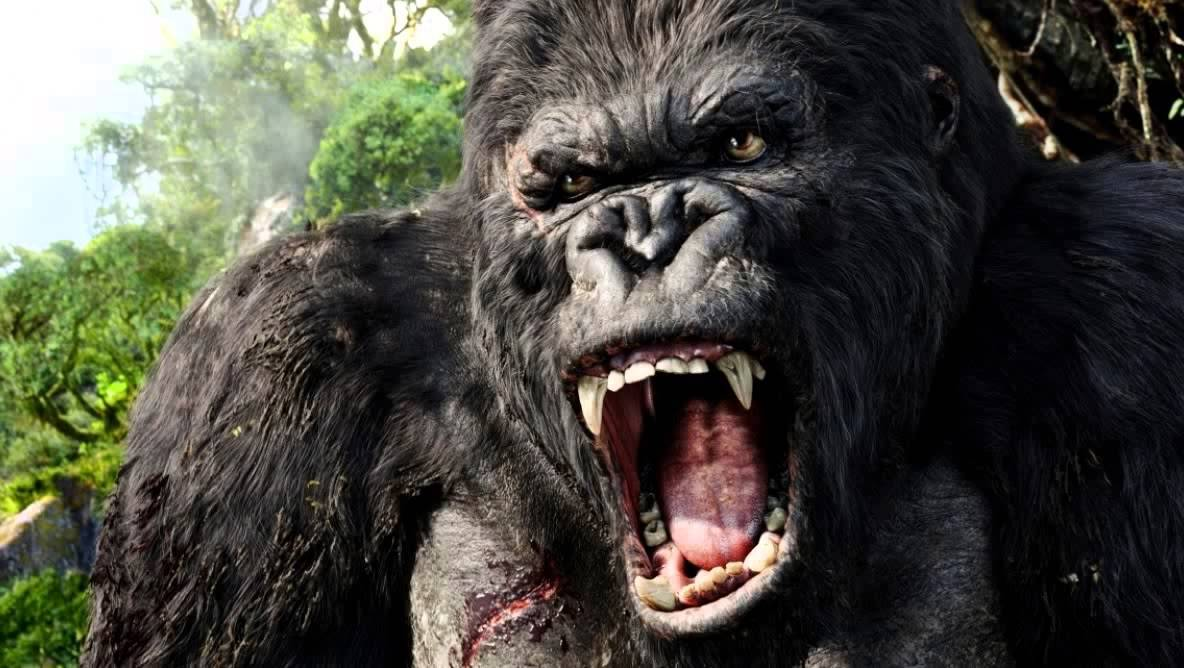 Critique Kong Skull Island : visuellement superbe, mais ...