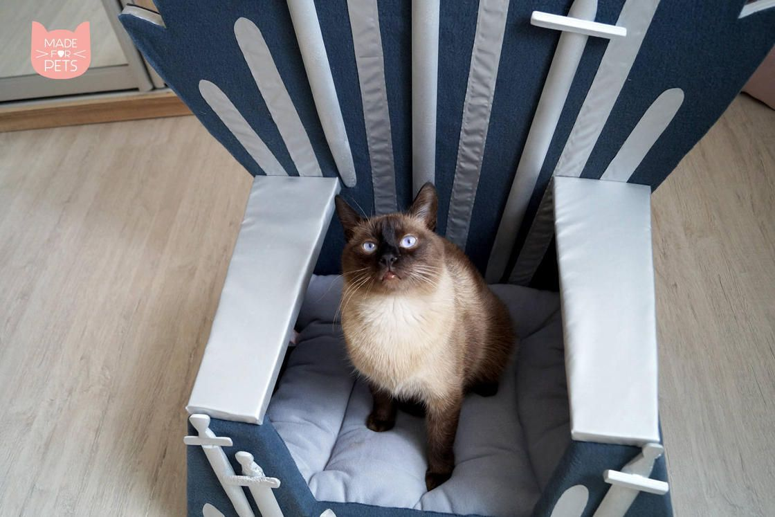 Game Of Thrones : Un trone pour votre chat #2