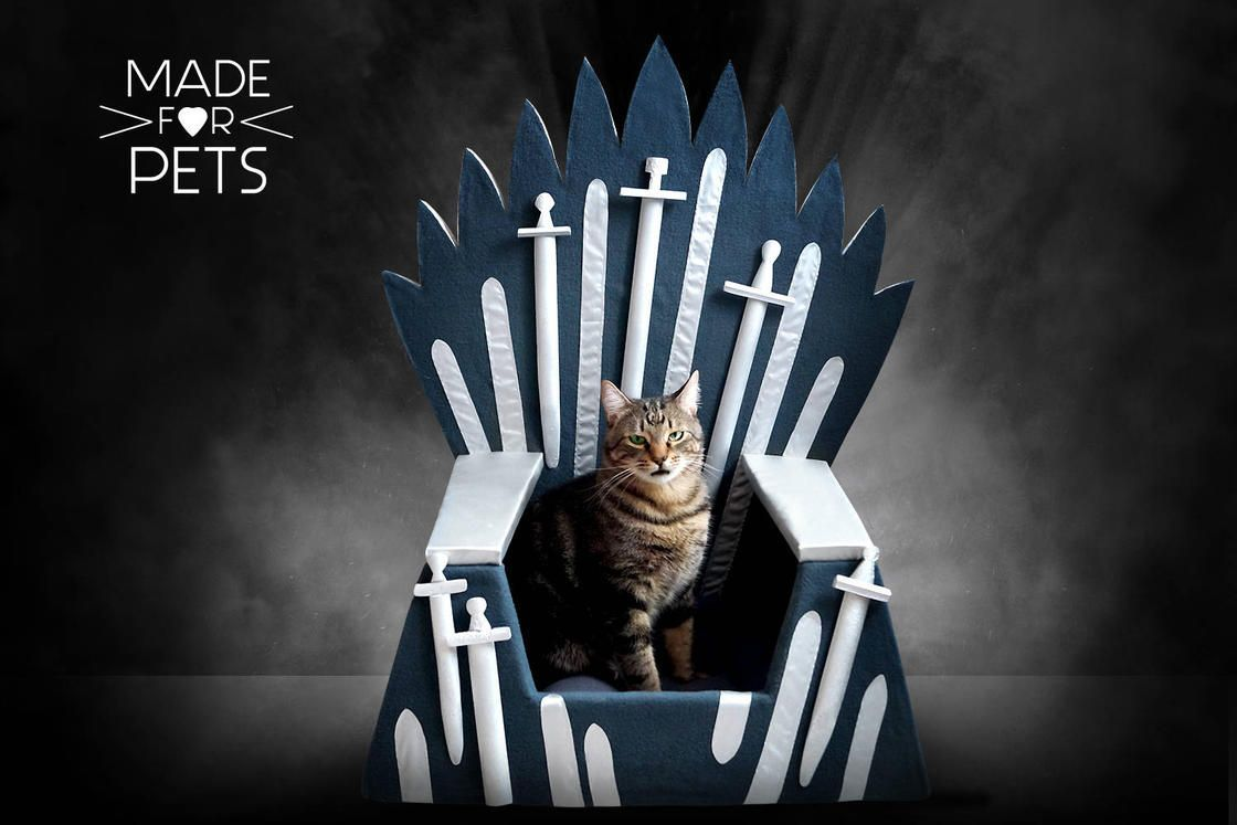Game Of Thrones : Un trone pour votre chat