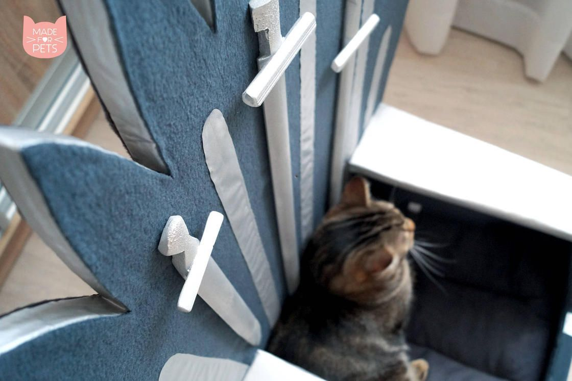 Game Of Thrones : Un trone pour votre chat #3