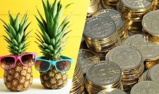Pineapple Fund : il donne 86 millions de dollars de Bitcoins à des associations