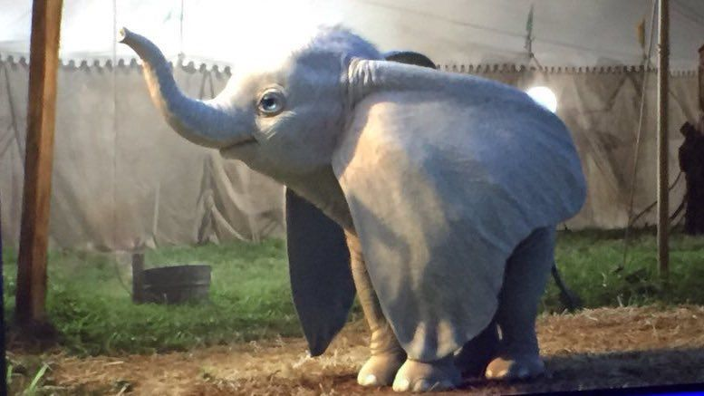 Dumbo : les 1ères images du film live action de Tim Burton #3