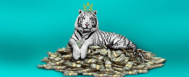 Le tigre blanc streaming gratuit